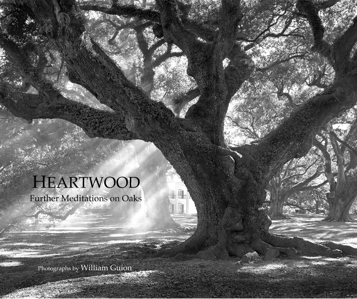 Heartwood - Further Meditations on Oaks