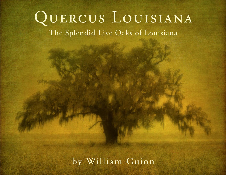 Quercus Louisiana Book Cover