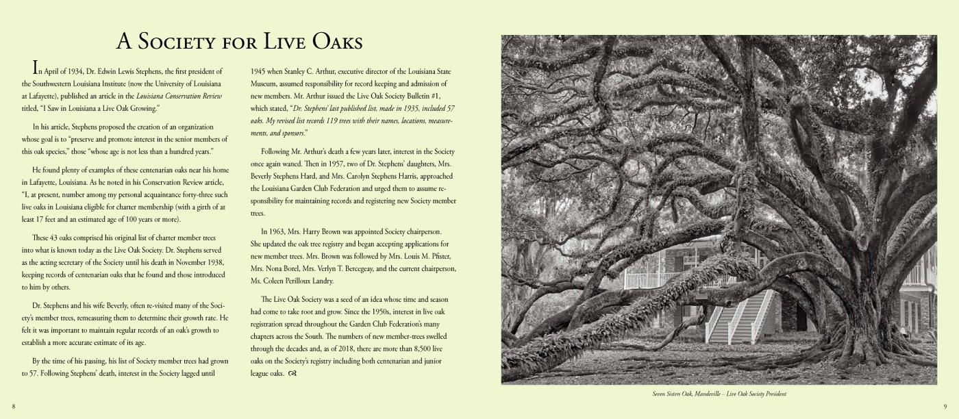 Quercus Louisiana_P-14-15.jpg