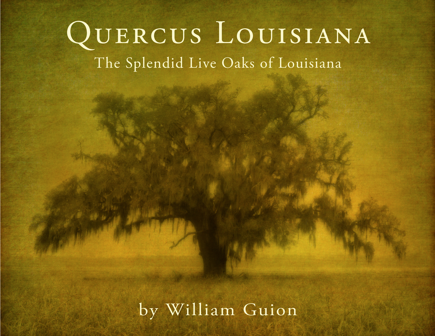 Quercus Louisiana Book