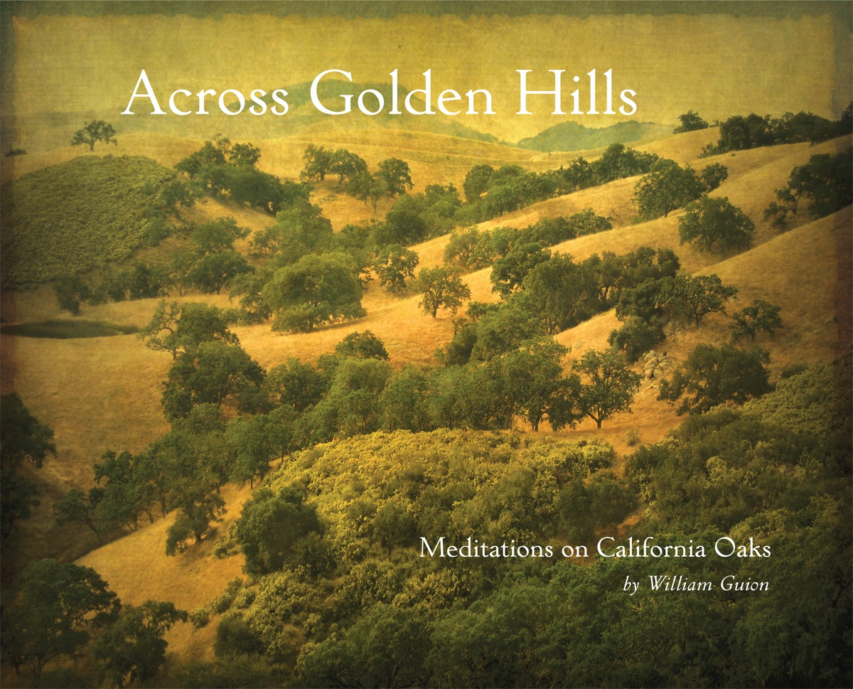 Across Golden Hills - Meditations on California Oaks