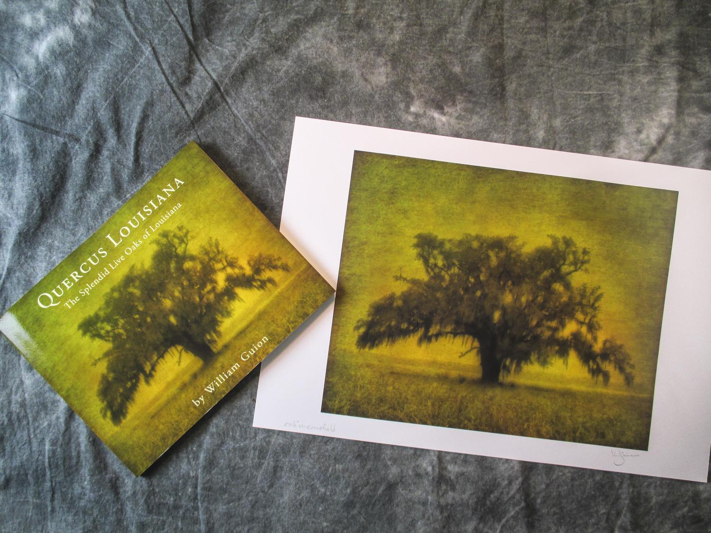 Quercus Louisiana Book and Print Combination