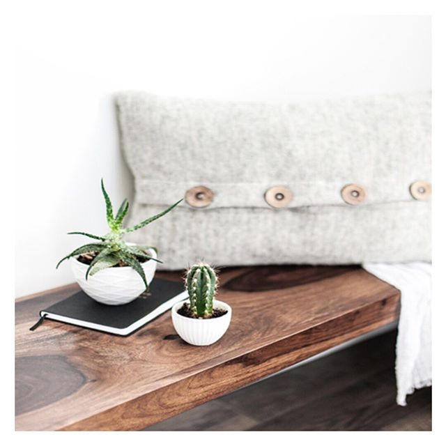 Did you know there have been scientific studies about the calming power of plants? ✨Bring in some feel-good greenery into your home, plants in minimalist containers not only look stylish, but they're also an instant mood-booster and an effortless way to add more serenity to any space✨. . . . .  #impeccablyplaced #livesimply #thehappynow #lifestyle #zen #getorganized #mindful #instadaily # #nyorganization #essentialism #proorganizer #nyorganizer #thatsdarling  #curatedhome #thehappynow #homeorganization  #uppereastside #theneatlife #relasimple #sparkjoy #tydingup #clearspaceclearmind #getsorted #personalorganizer #simplelife #lifesimplified #minimalist #minimalism