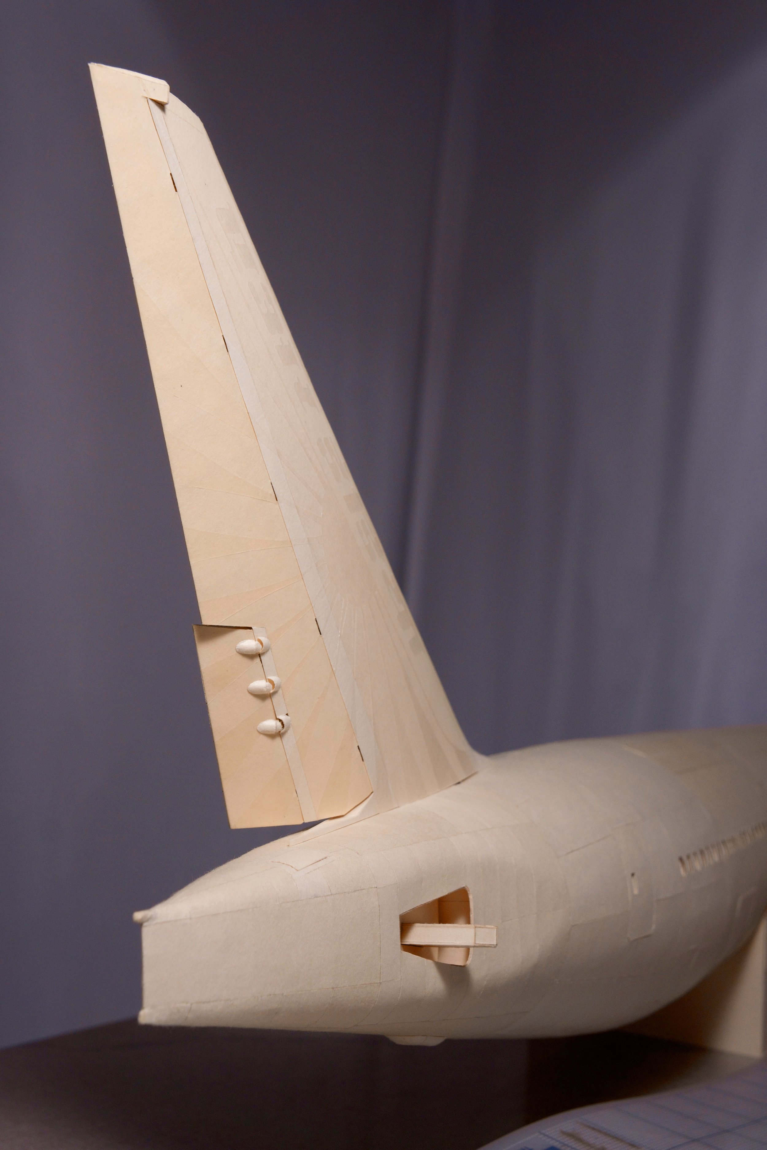 The tail fin showing full extension to one side