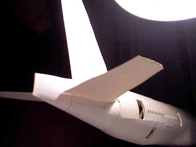 Tail - 15.jpg