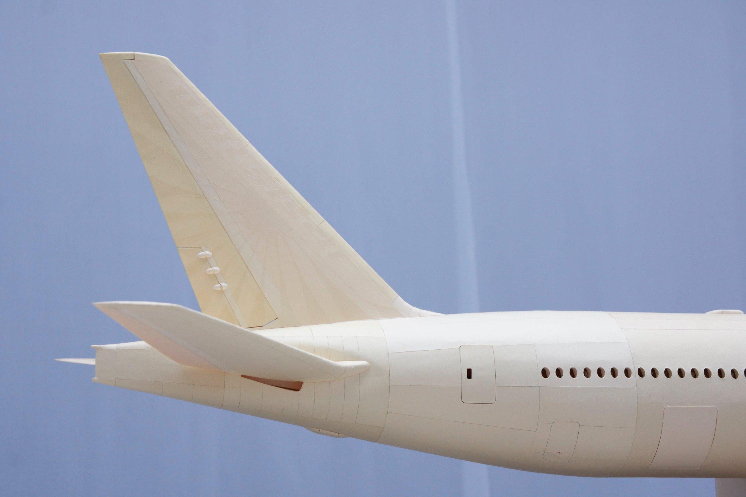 Tail - 11.jpg