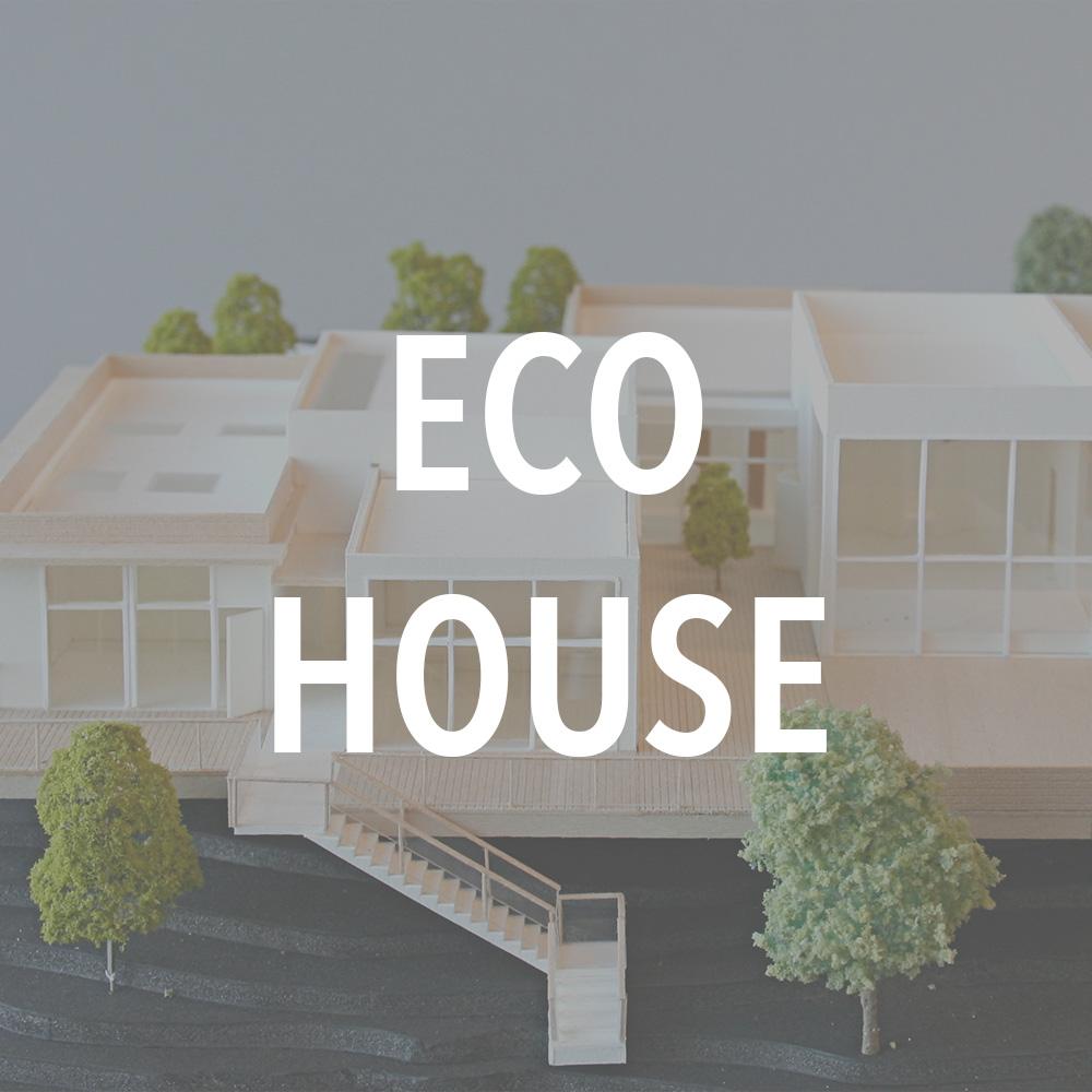 Eco House.jpg