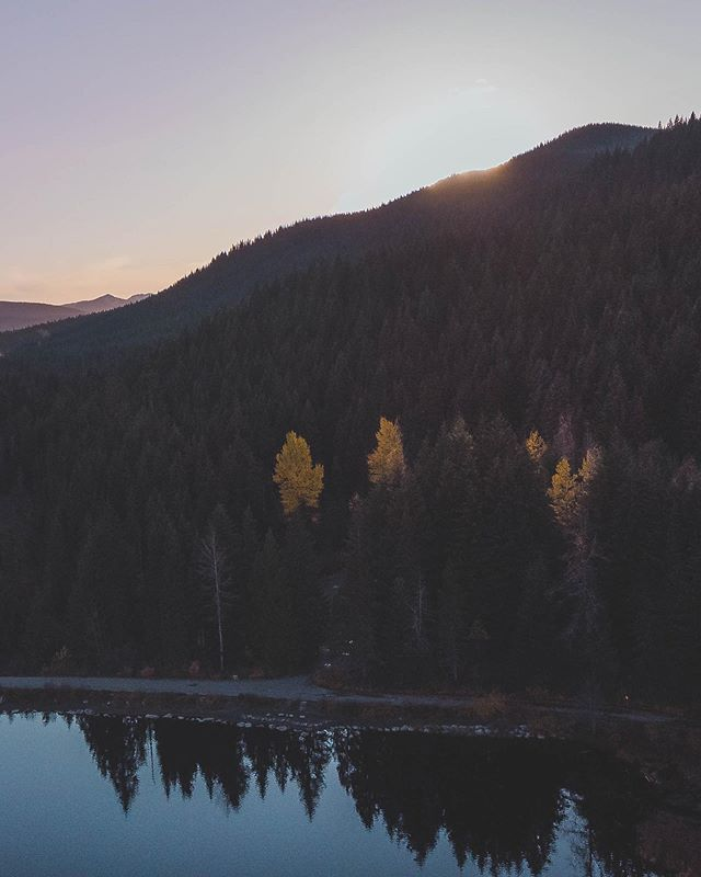 Evening light over Timothy Lake in Oregon. The tops of these trees were the last light, lit by the sun as it descended behind the mountain. • • • • • #stayandwander #theoutbound #letsgosomewhere #exploremore #keepitwild #agameoftones  #roamtheplanet #socality #welltravelled #optoutside #modernoutdoors #rei1440project #travelstoke #getoutstayout #adventurethatislife #wanderfolk #finditliveit #welivetoexplore #campvibes #openmyworld #pnw #adventure #ourcamplife #liveoutdoors #discoverearth #earthfocus #mytinyatlas #folkgood #thegreatoutdoors #vscogrid