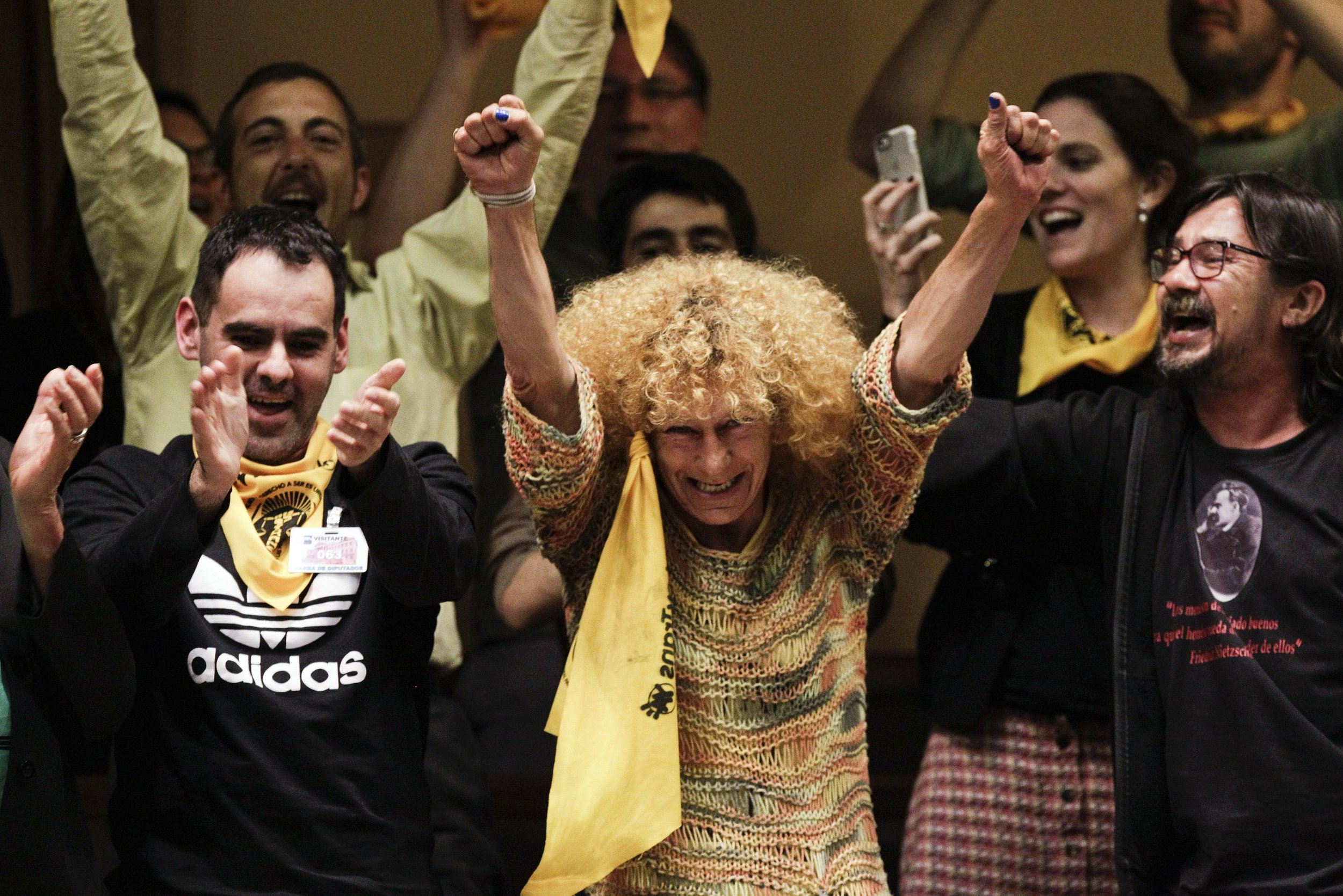 Activists celebrate the approval of the Comprehensive Law for Trans People (Matilde Campodonico/Associated Press).