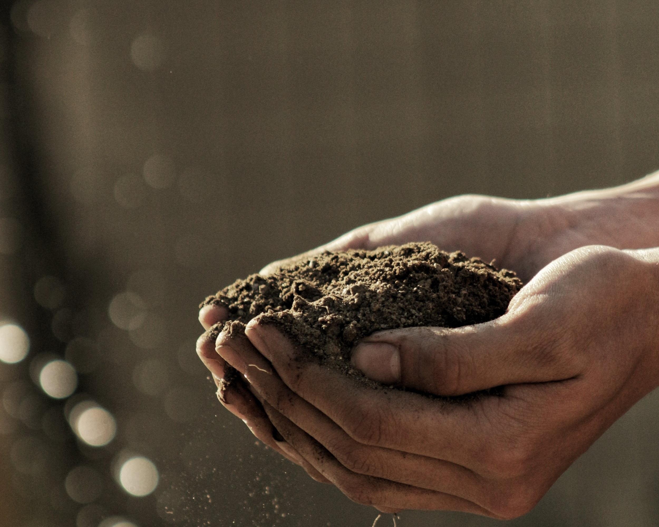 composting. -