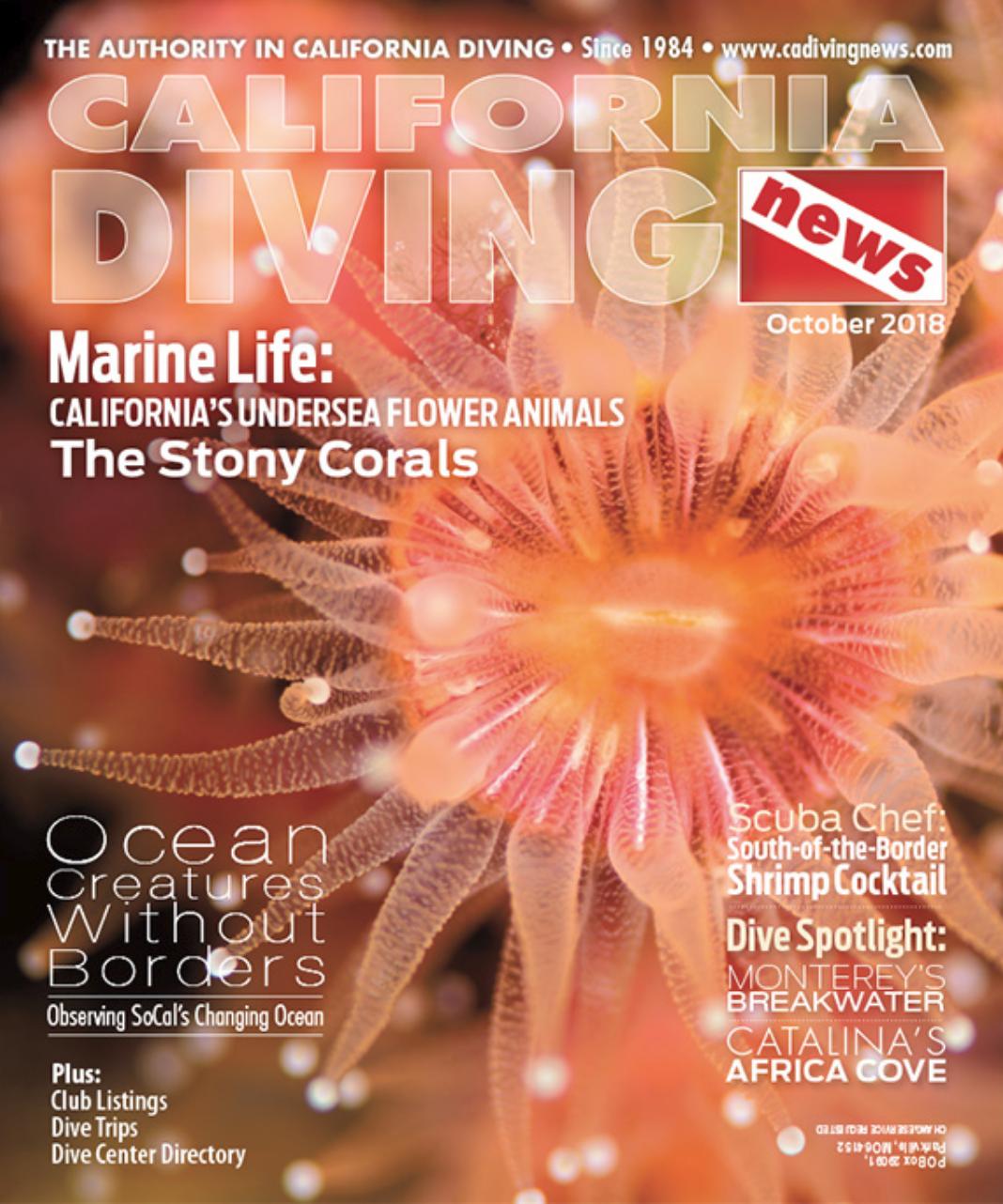 CDN Oct 2018 Cover.png