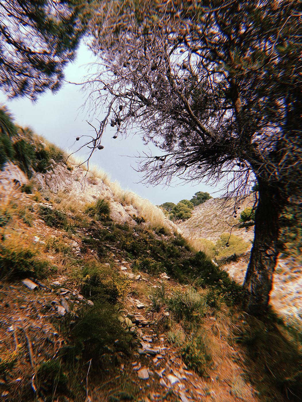 Malaga_007.jpg