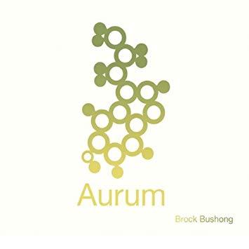 """DEBUT ALBUM, """"AURUM"""""""