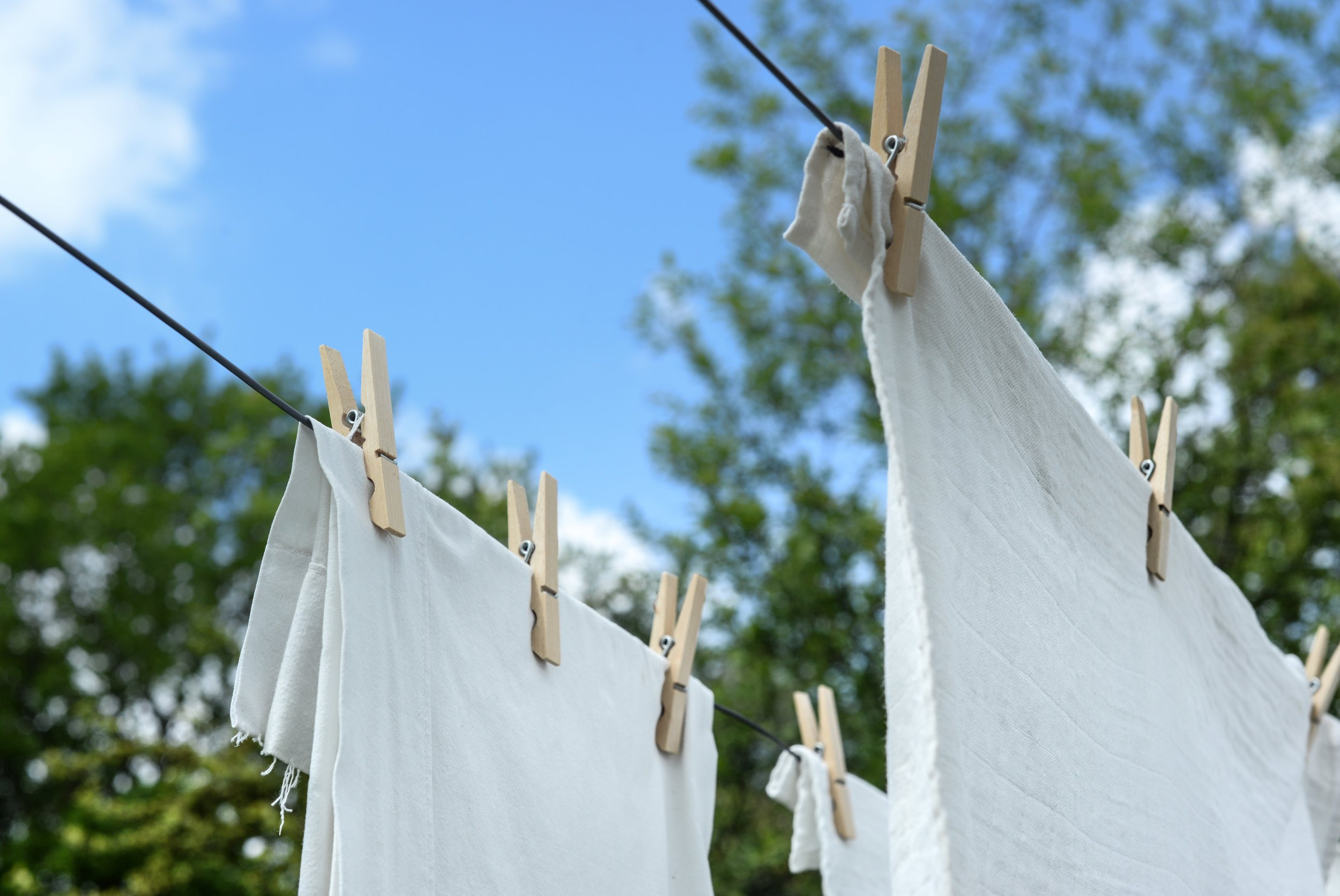 close-up-clothes-clothesline-1122167.jpg