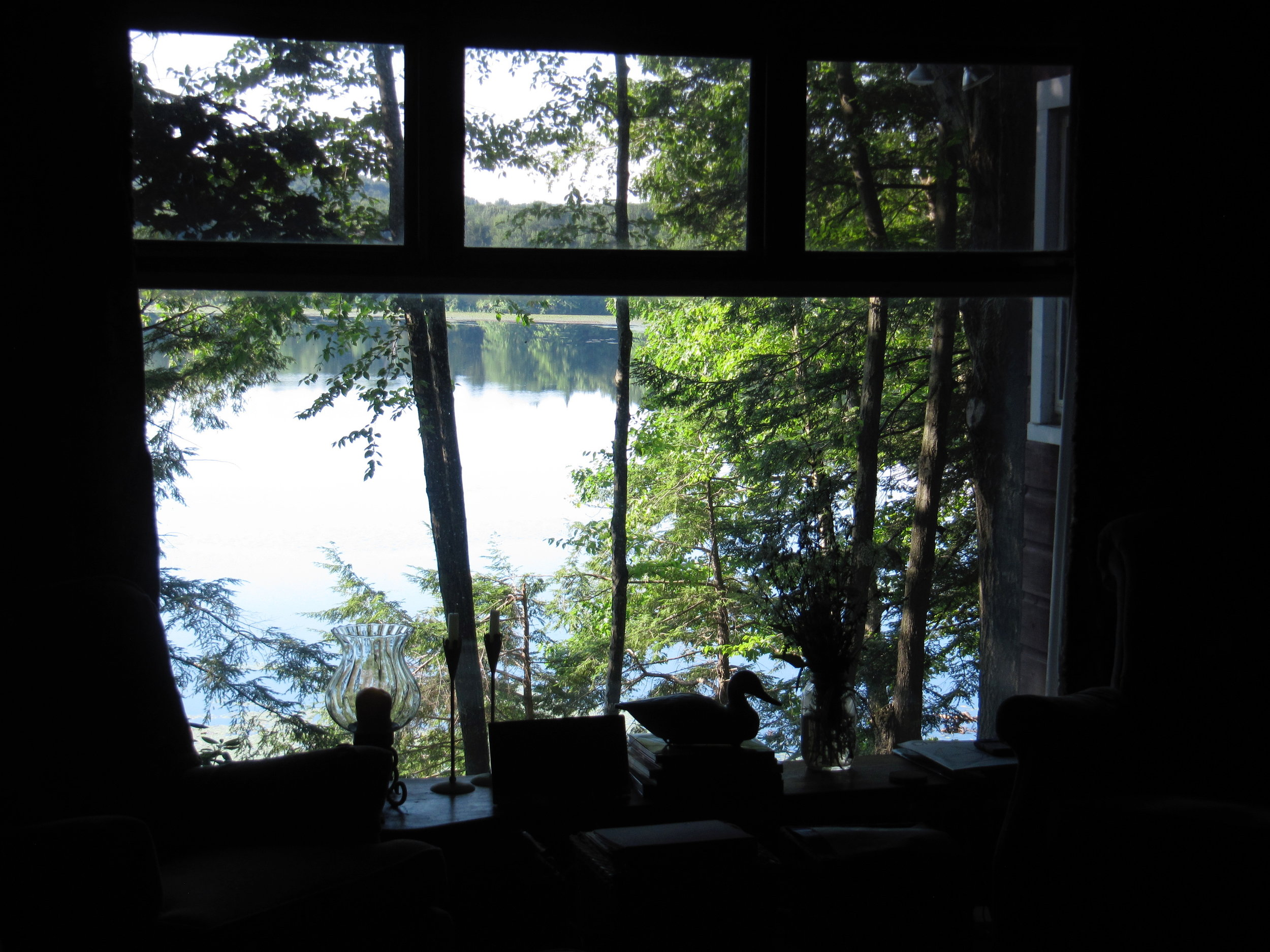 Twin Island Lake View From Living Room 7-2011.jpg