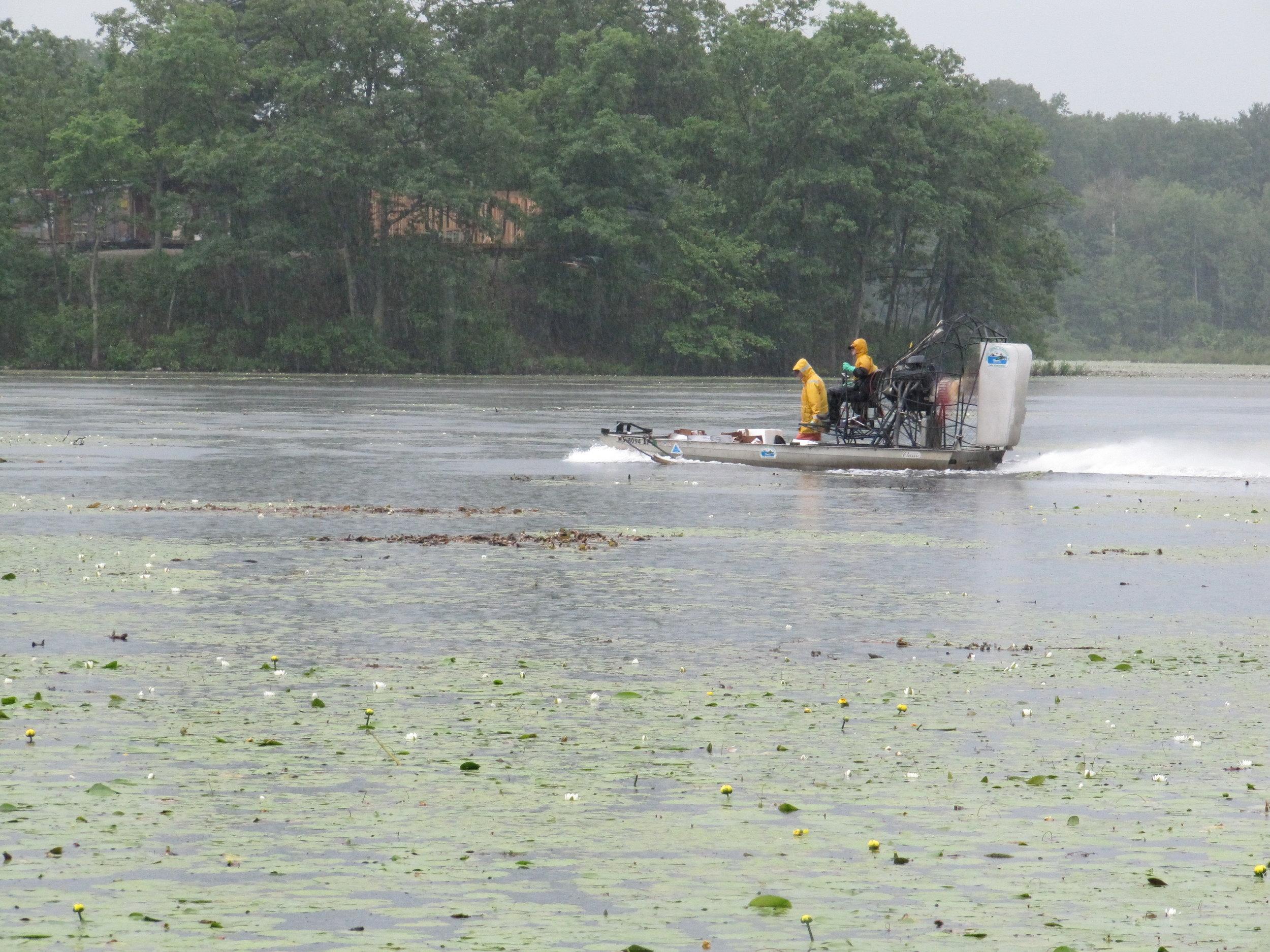 Lake DEC Treatment 6-9-2010 (1).jpg
