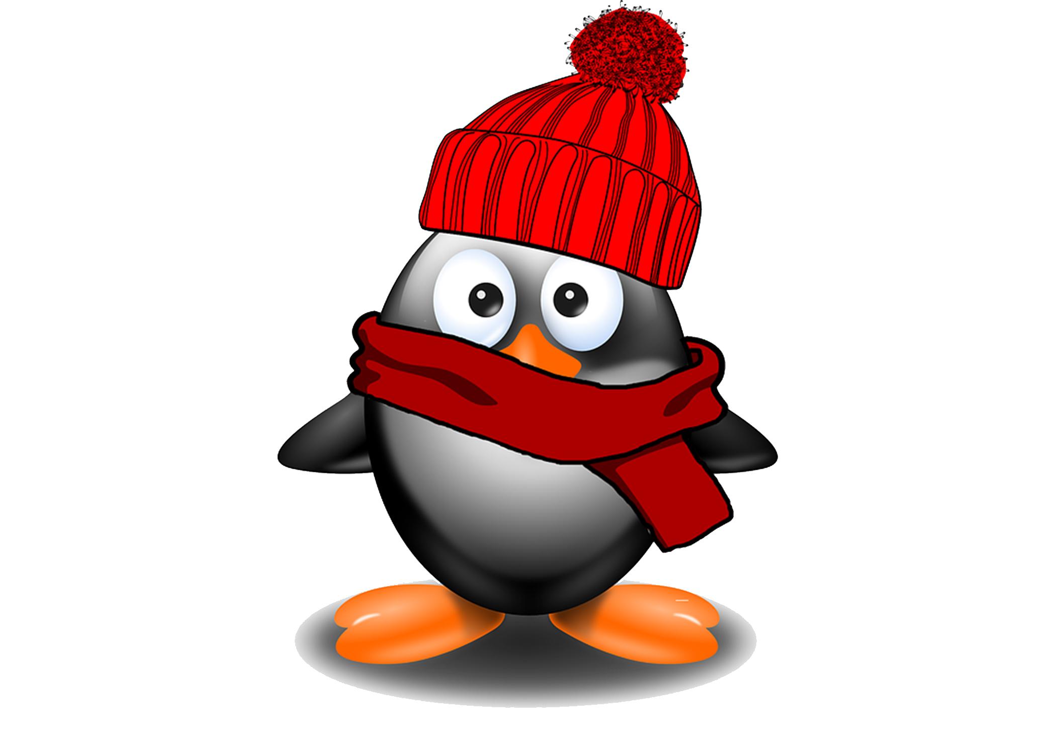 cold penguin.jpg