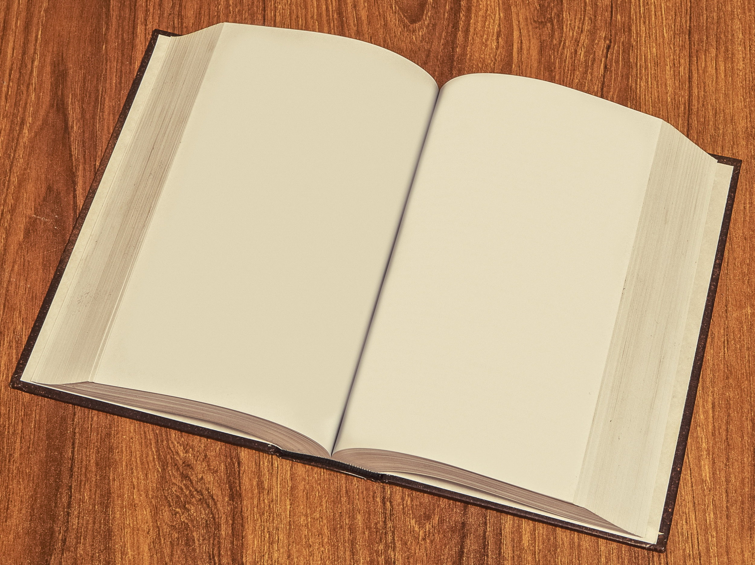 This blank book is a visual representation of you being spared a detailed linguistic analysis.