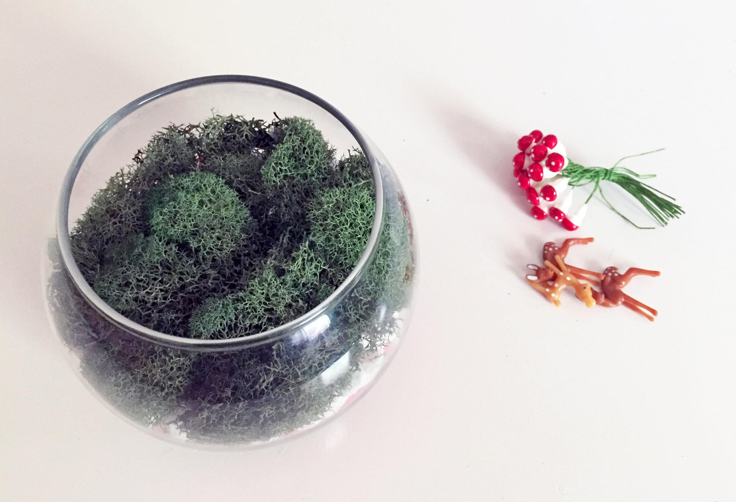 mindful-crafts-make-a-terrarium-4.jpg