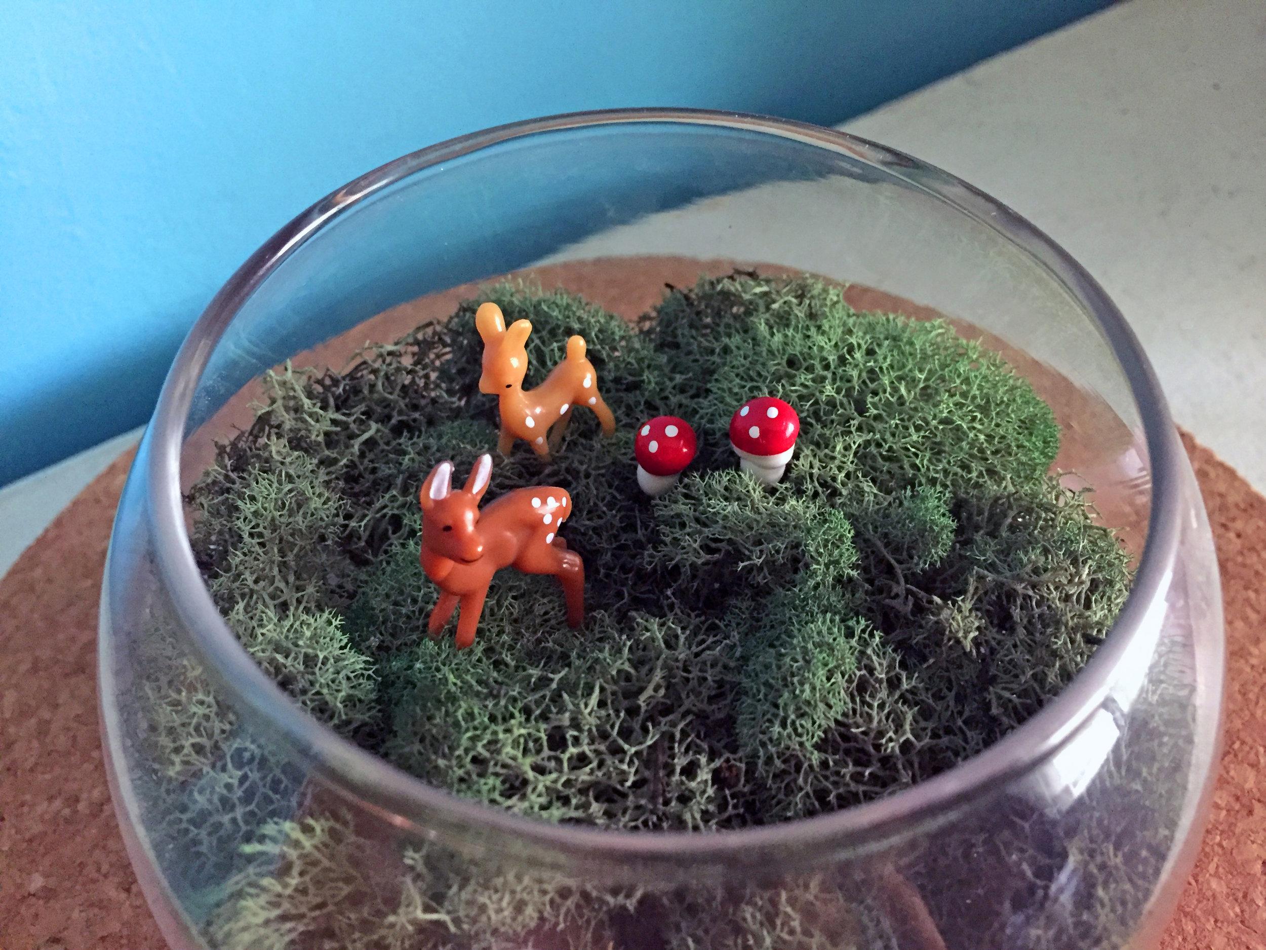 mindful-crafts-make-a-terrarium-5.jpg