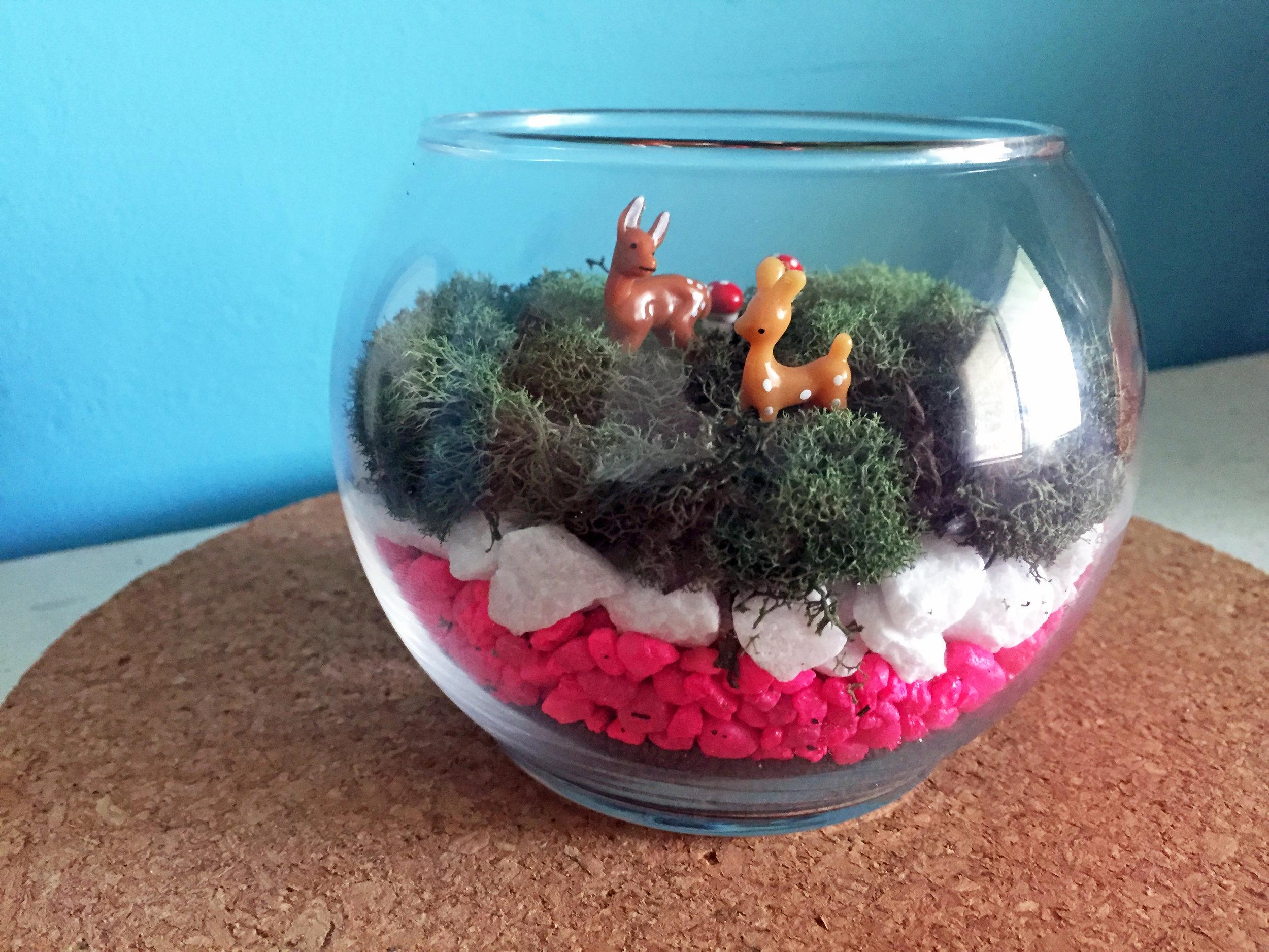 mindful-crafts-make-a-terrarium.jpg
