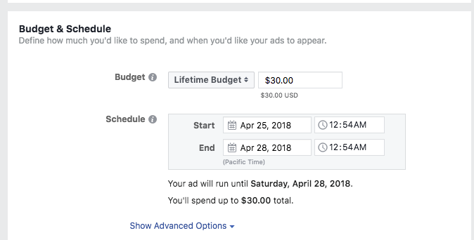 Facebook+Ad+Budget+and+Schedule.png