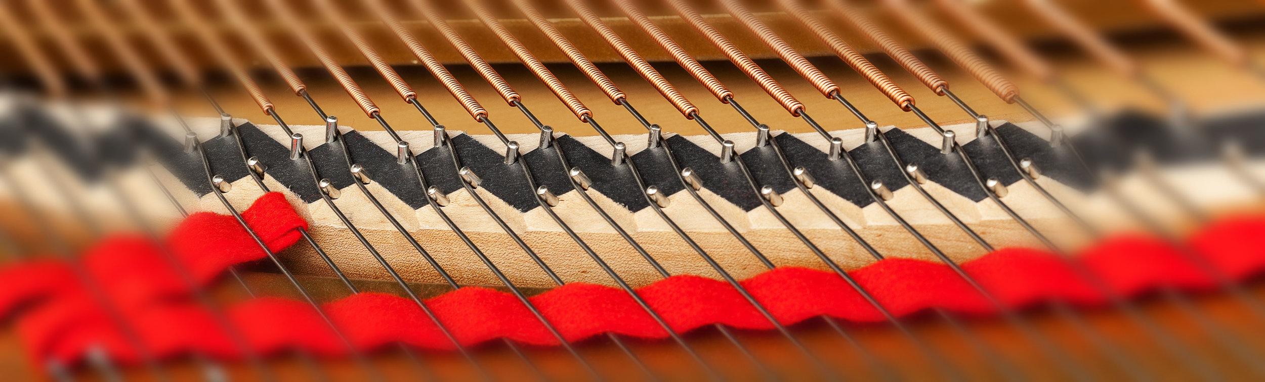 strings_108570884cr2.jpg