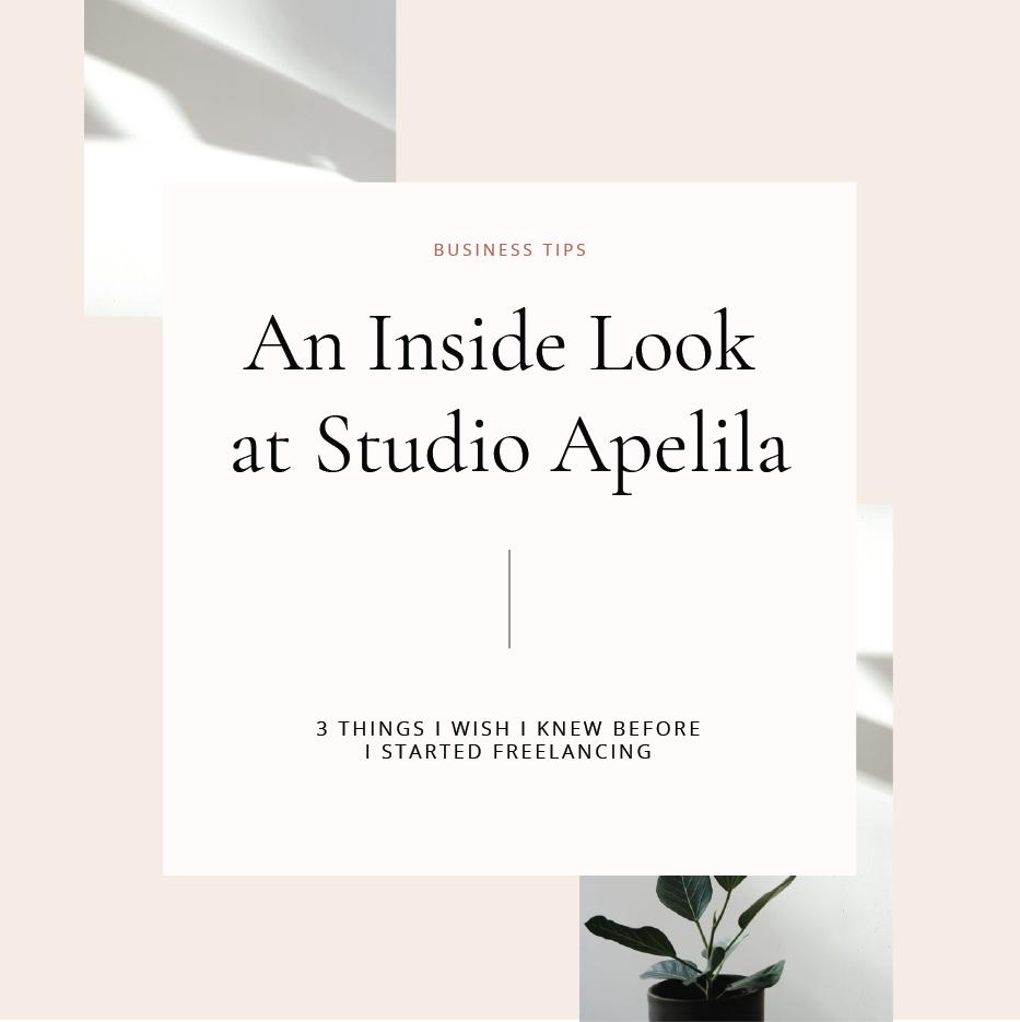 Studio Apelila blog posts BRANDING.png