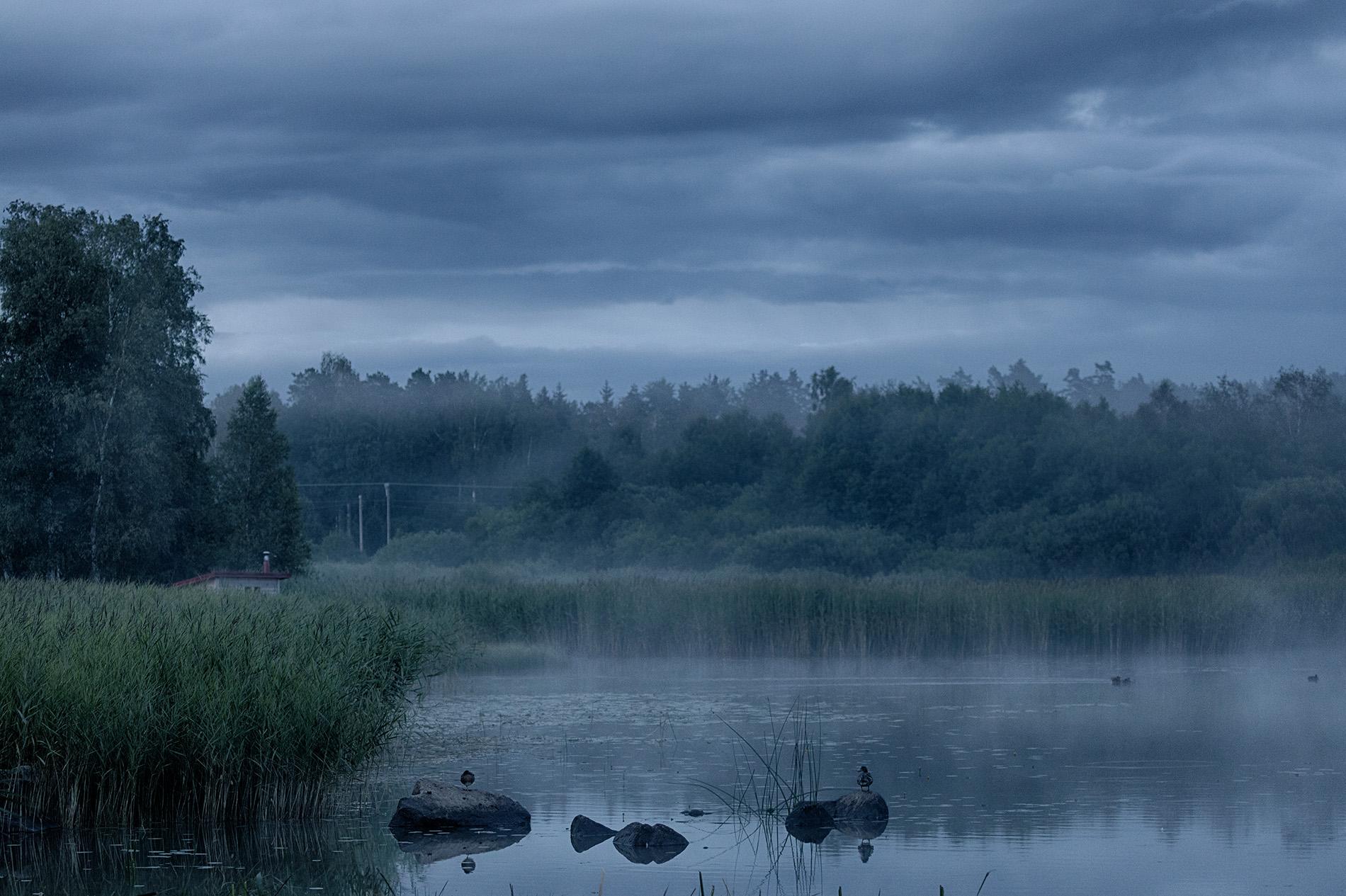 Foto Mikael Wallerstedt