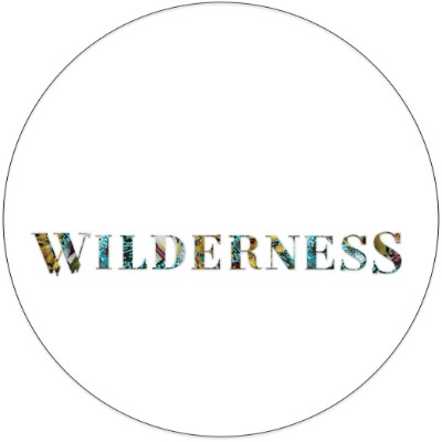 wilderness-festival-logo.jpg
