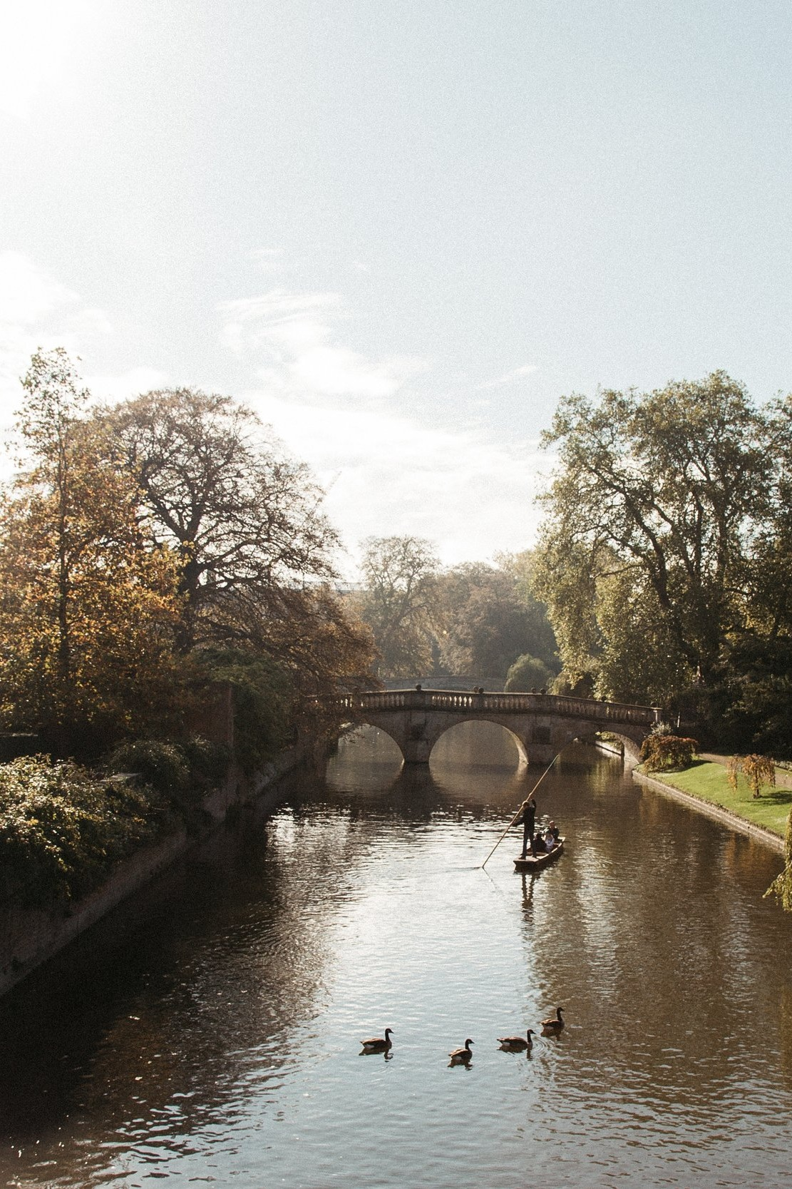 Cambridge+Social+Media+Consultant