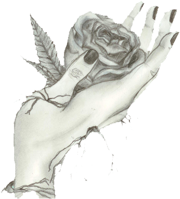 Roses_Pushed2013.png
