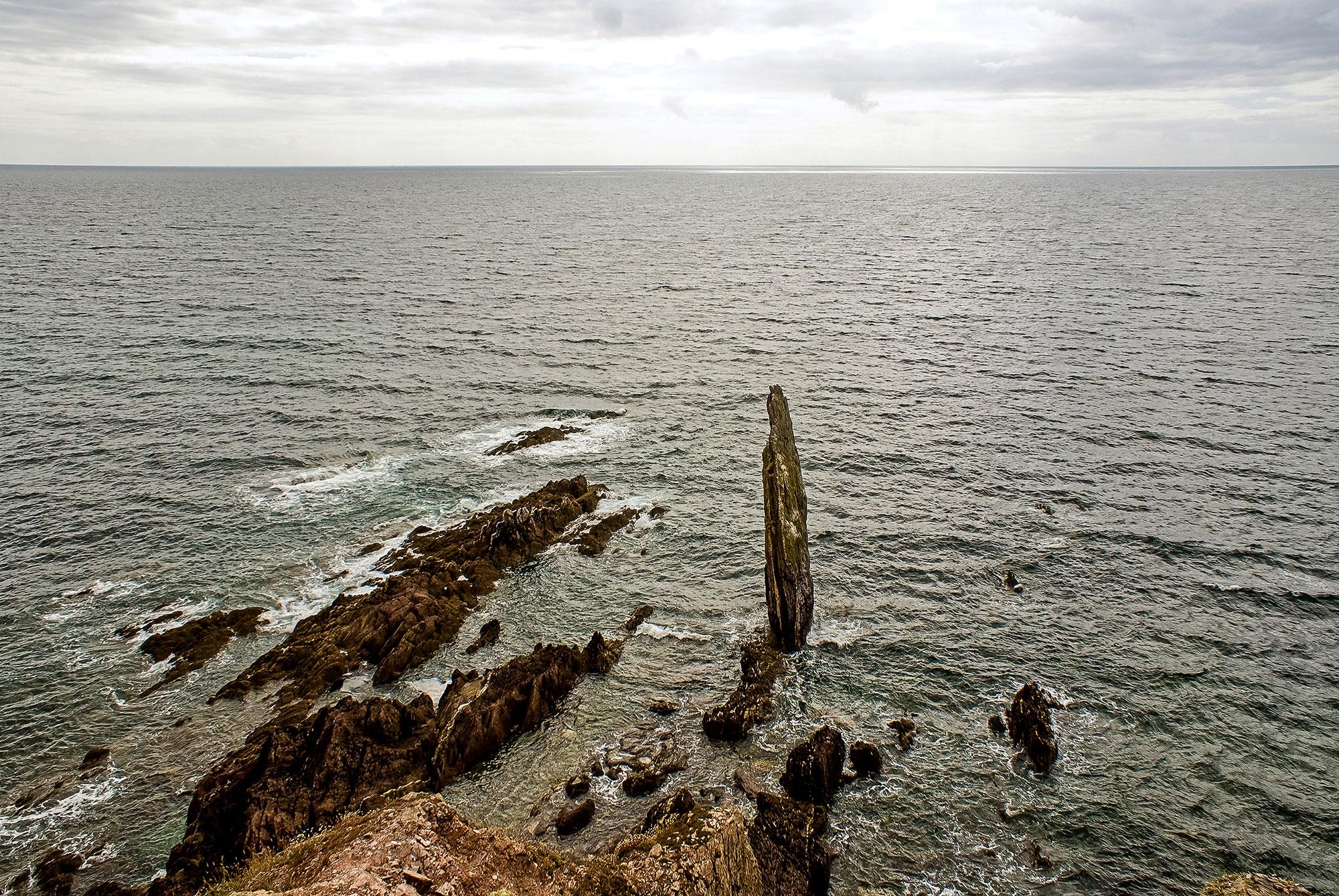 cliff-reanimiert.jpg