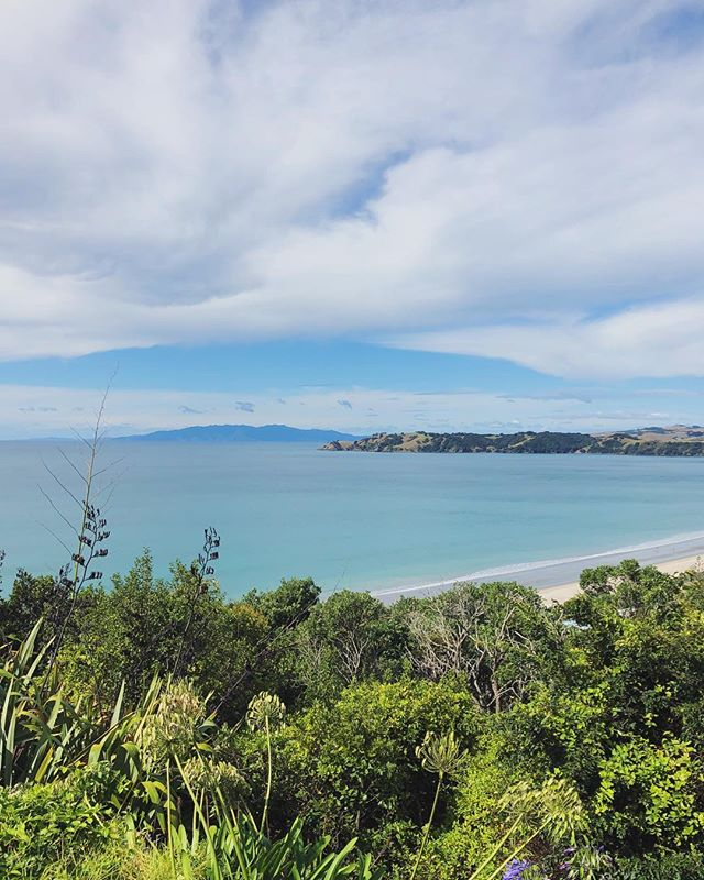 Missing my new favorite views from Waiheke Island