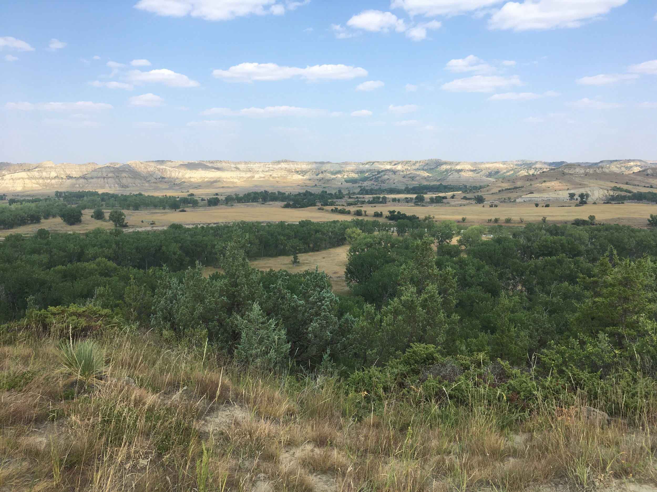 You can see the North Platte River just beyond the trees. Views like this were normal throughout the hike.