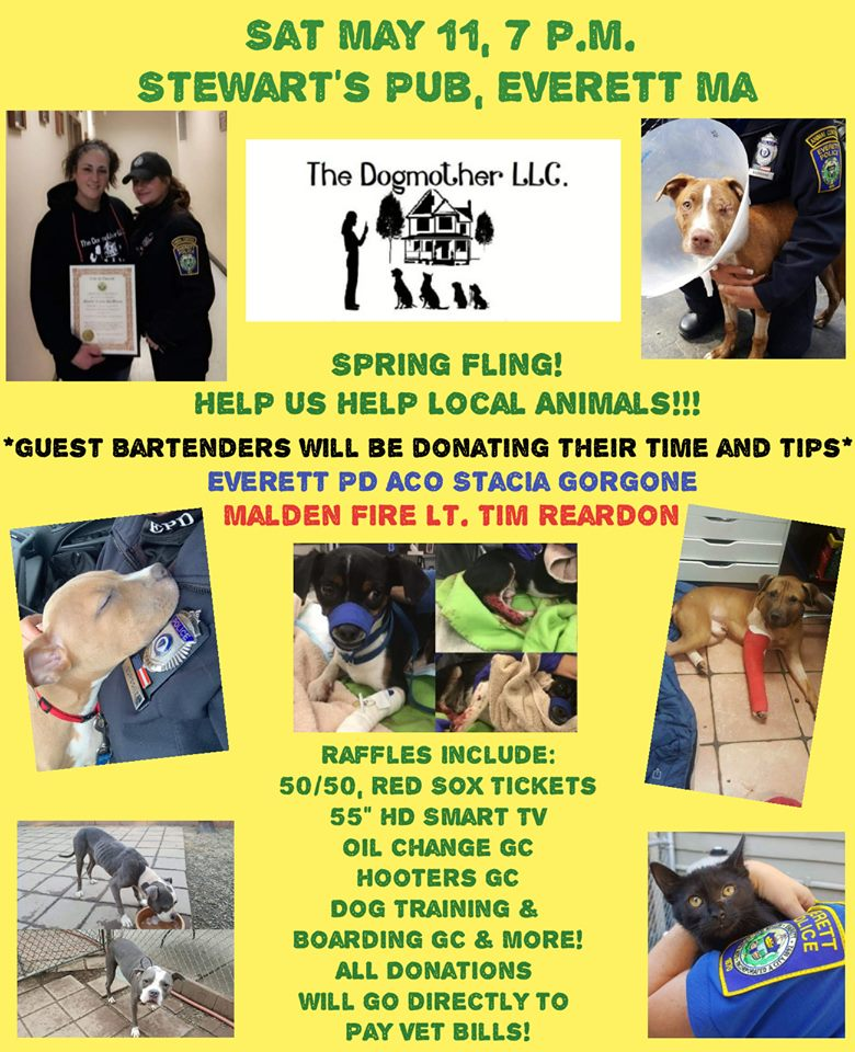 Support The Dogmother LLC. This Saturday! - Salem Saves Animals will be coming to support these amazing people full of kindness for animals who do not have a voice . Let me know if you want to go????Leanne Marrama Lisa Tranfaglis and a few more friends will be having a great time and raising money for our beautiful animals!