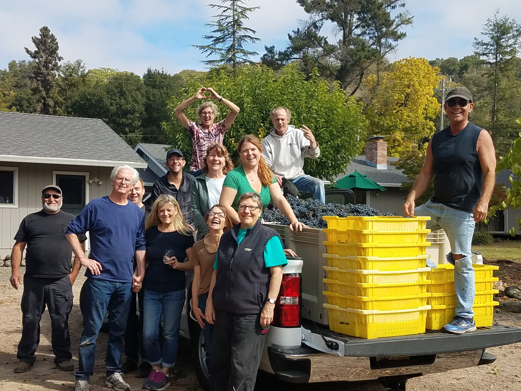 Harvest crew of the Flying J's vineyard 2018 Coombsville, Napa Valley