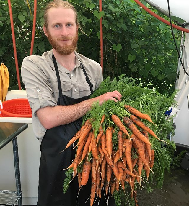 First carrots of the season, we'll have some for CSA and Market this weekend Sunday 10-2 @sundayfarmermkt