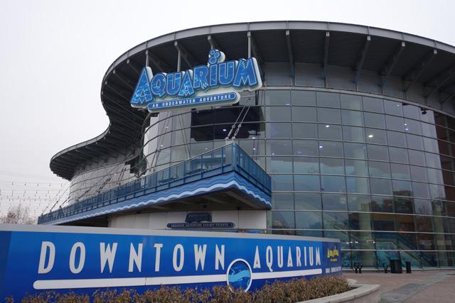 Denver Downtown Aquarium.