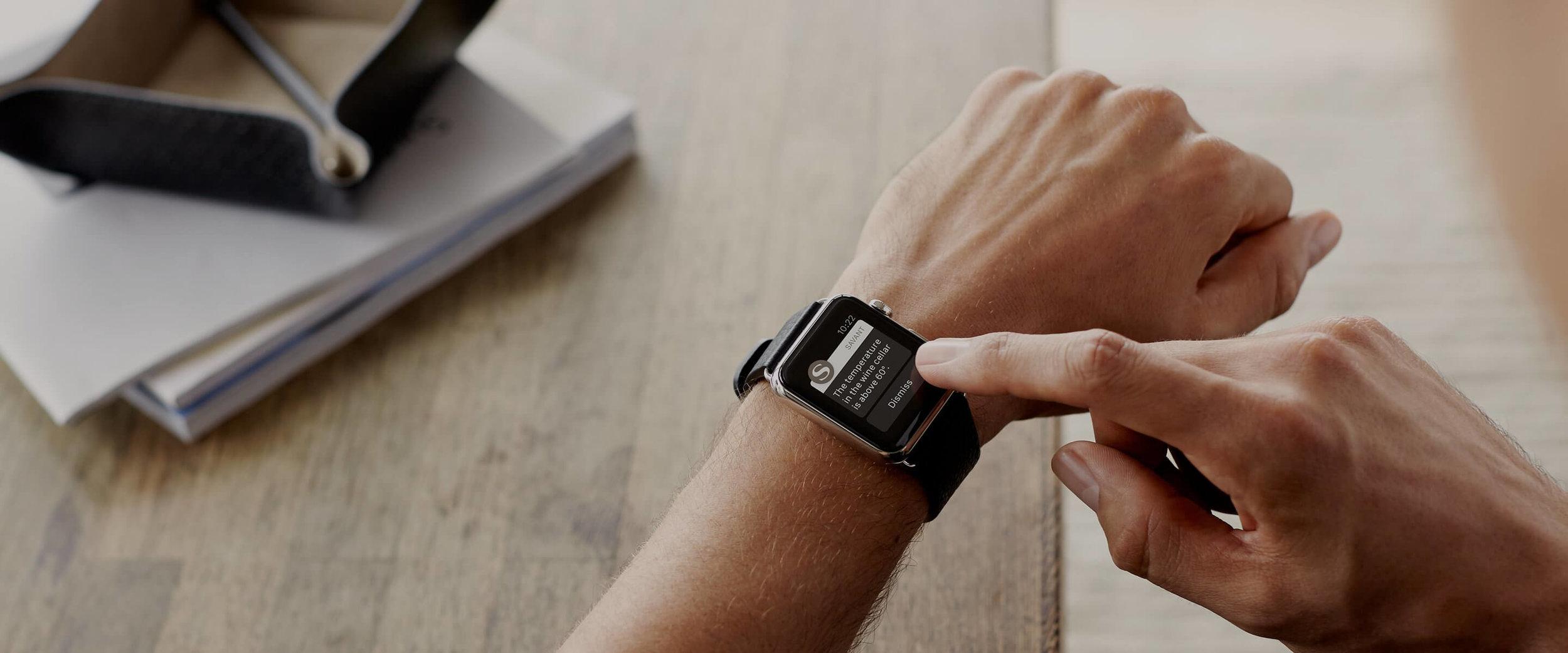 Savant Apple Watch.jpg