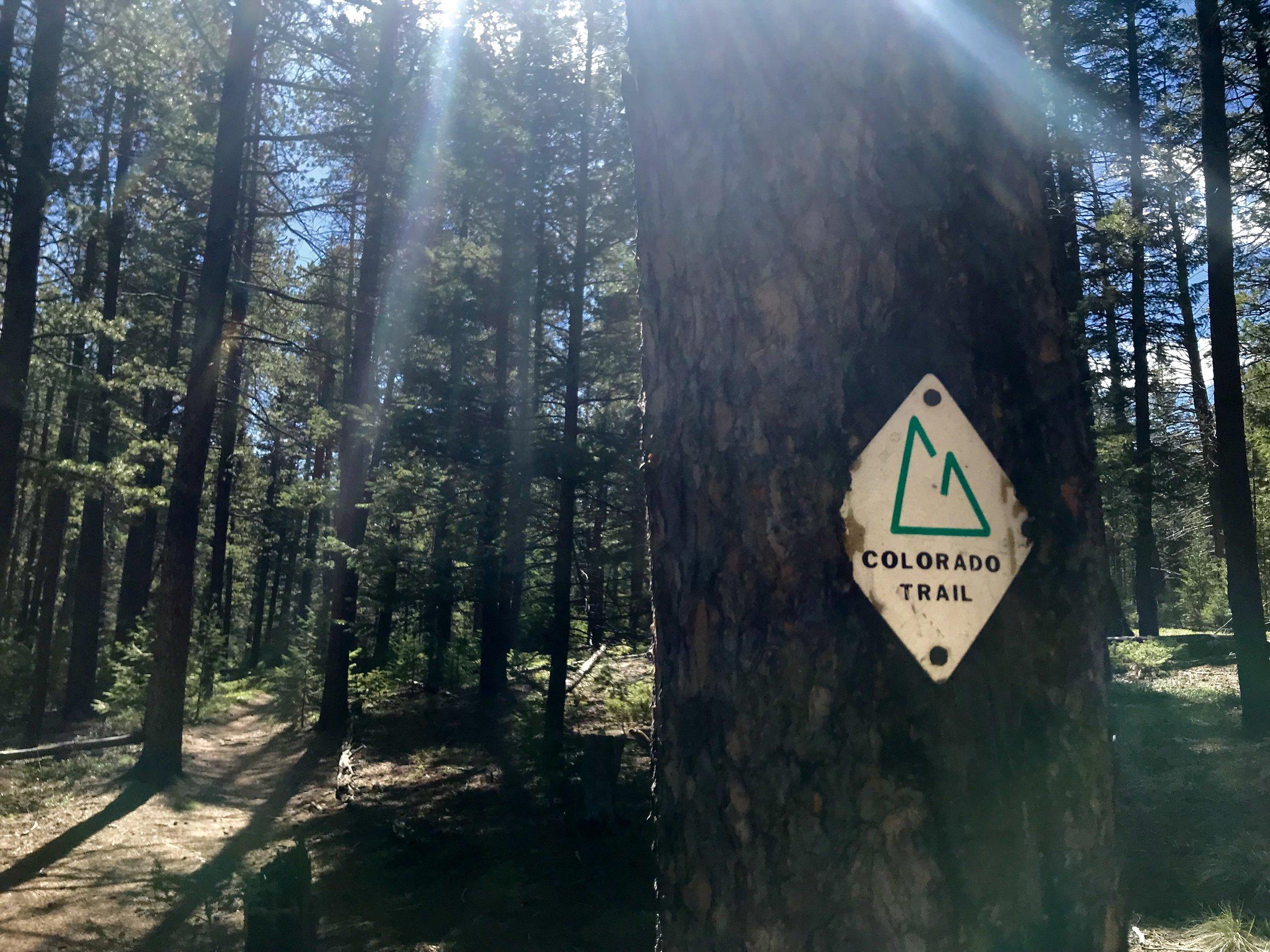 colorado trail.jpg