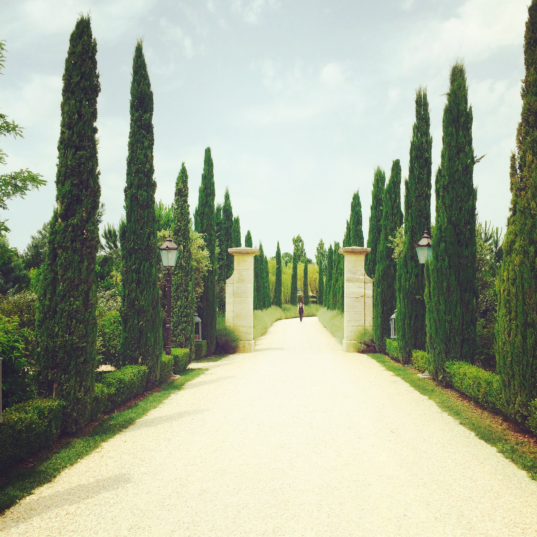 Borgo Santo Pietro Tuscany.JPG