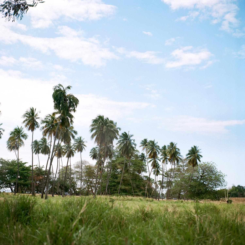 44-tres-palmas-beach-rincon.jpg