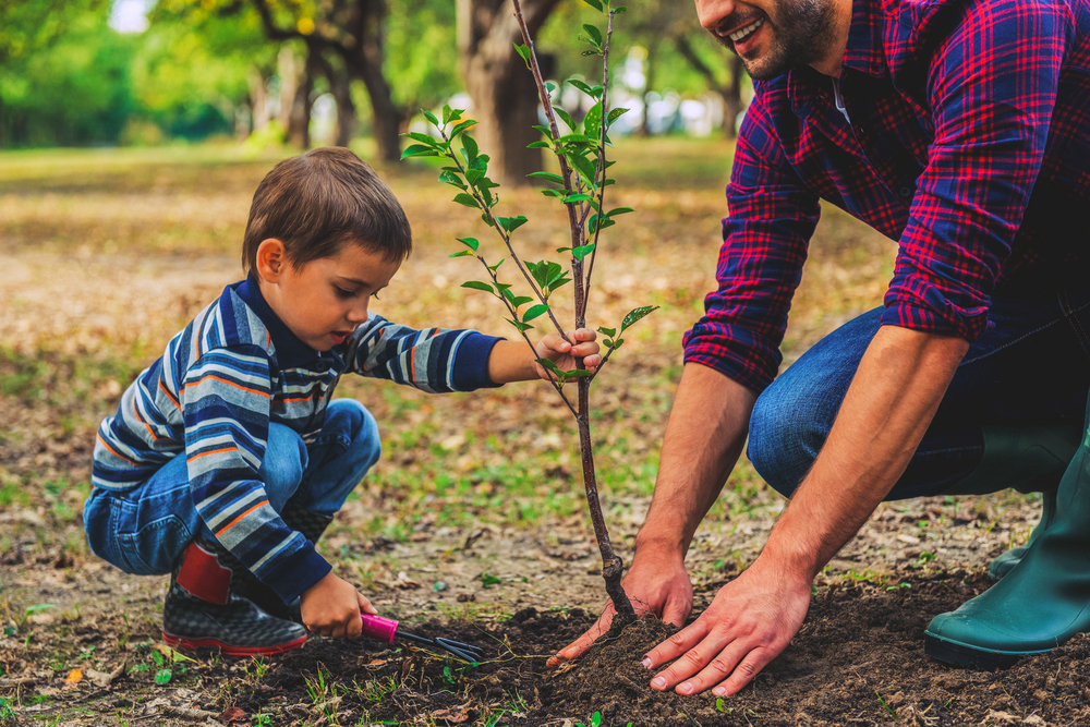 plant-a-tree-for-earth-day.jpg