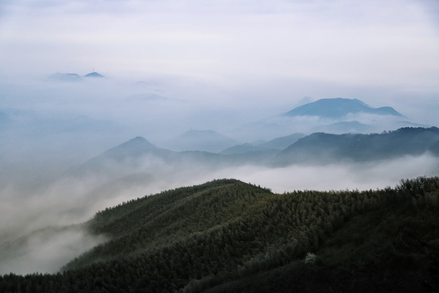 Depression hides a person, like fog hides a mountain. When the fog clears, the magnificence of the mountain is revealed.    Photo by  Raychan  on  Unsplash
