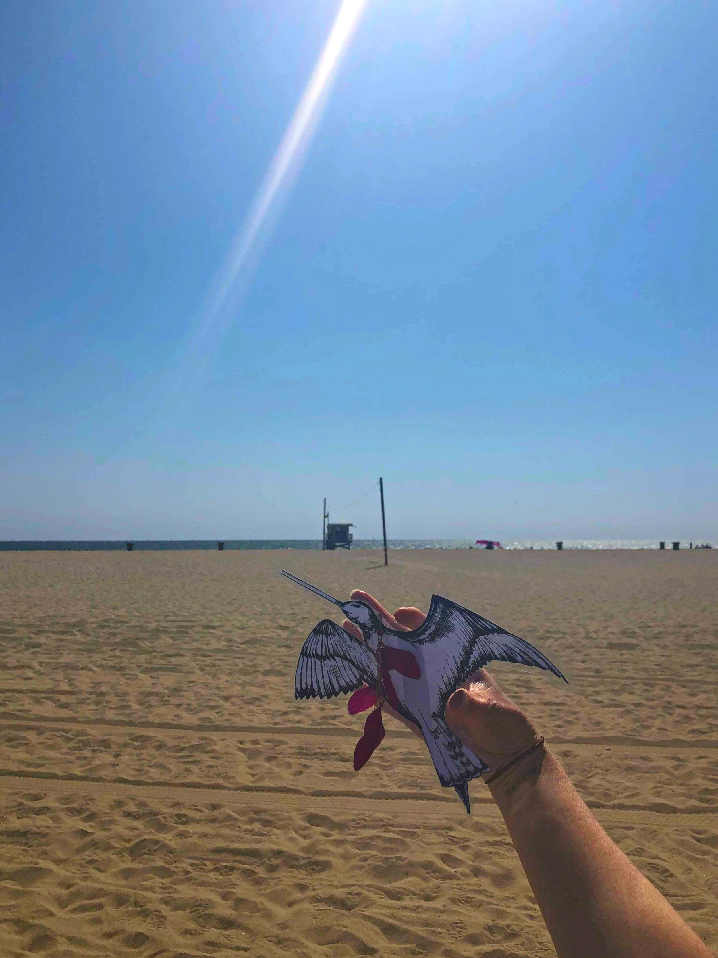 At Venice Beach, submitted by Thalia