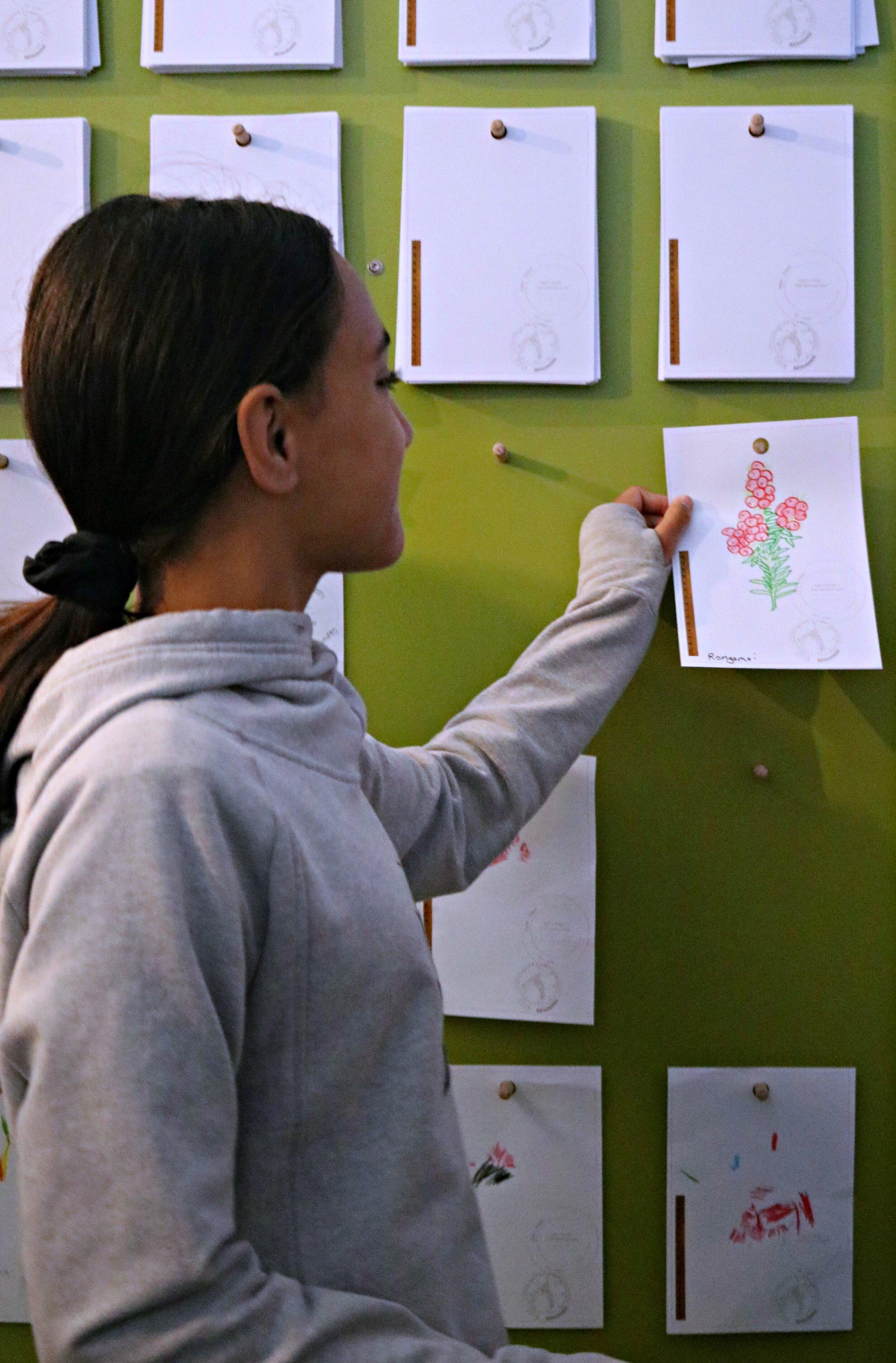 Tamariki were invited to share their artwork on the plant display wall in Tūranga-nui-a-Kiwa - Gisborne