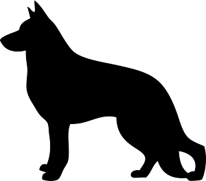 gsdsilhouette.png