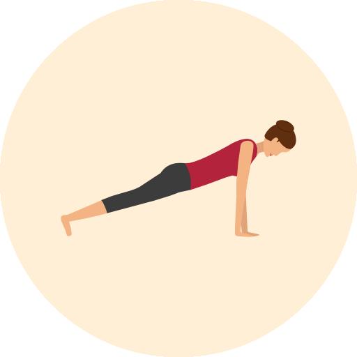 Phalakasana Plank Pose Yoga Alignment Guide