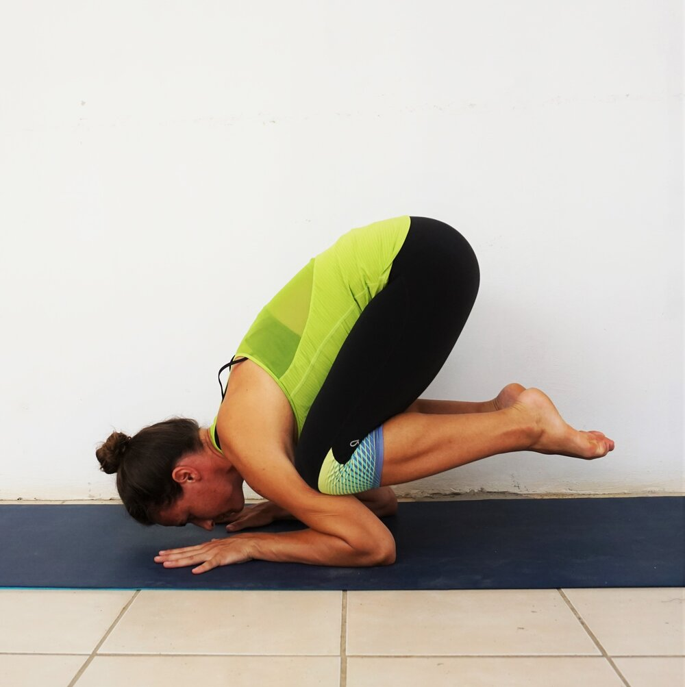 What is the Difference Between Crow Pose / Kakasana and Crane Pose ...